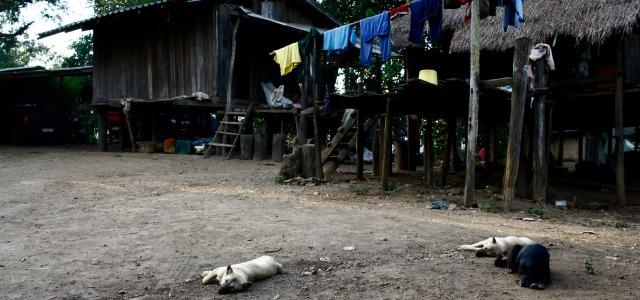 trekking thailand3