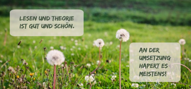 Theorie und Umsetzung